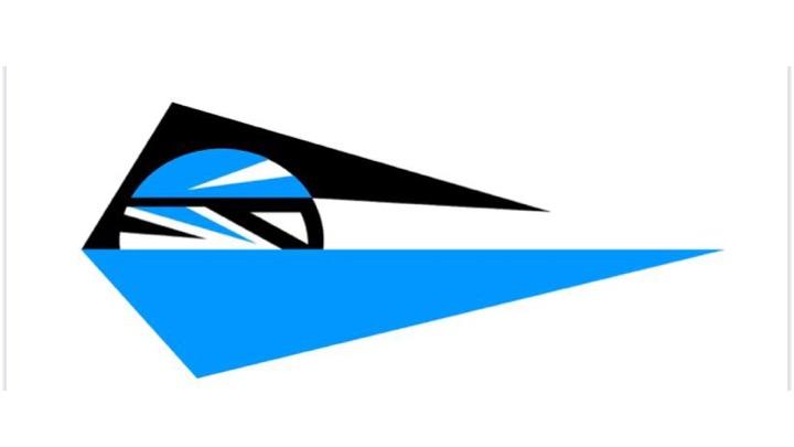 Nasce il Team Nuoto Trento (Tnt)