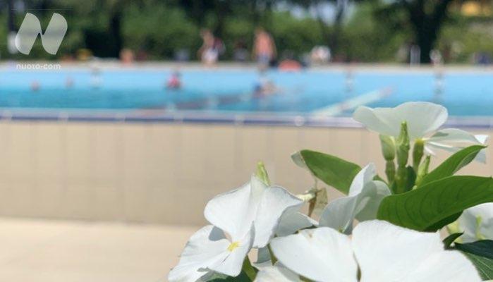 Lavoro in piscina, nuove opportunità con Nuoto•work
